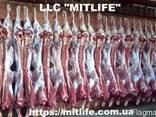 Говядина Телятина Мясо Халяль оптом Украина LLC Mitlife