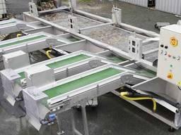 Калибровочная Машина для Спата Моллюсков
