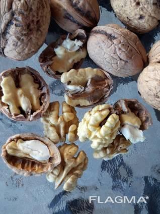 Орехи - walnuts inshell, kernel