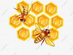 Продам мёд оптом 19720кг