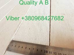 Sell sawn timber, edged planks, blanks Aspen - фото 4