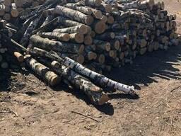 Уголь древесный - фото 3